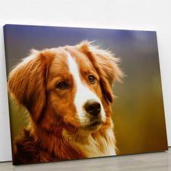 tableau chien berger décoration murale