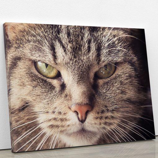 tableau-chat-gris-portrait