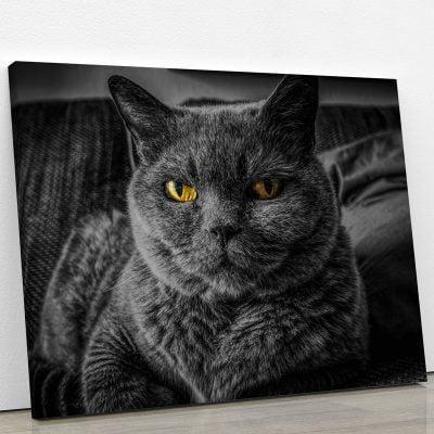 tableau-chat-noir-yeux-jaune