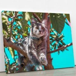 tableau chat gris perché