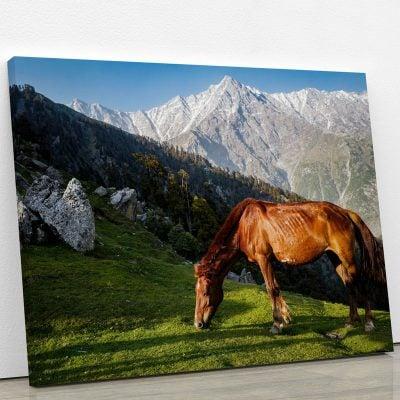 tableau-cheval-et-montagne-deco-murale-artetdeco