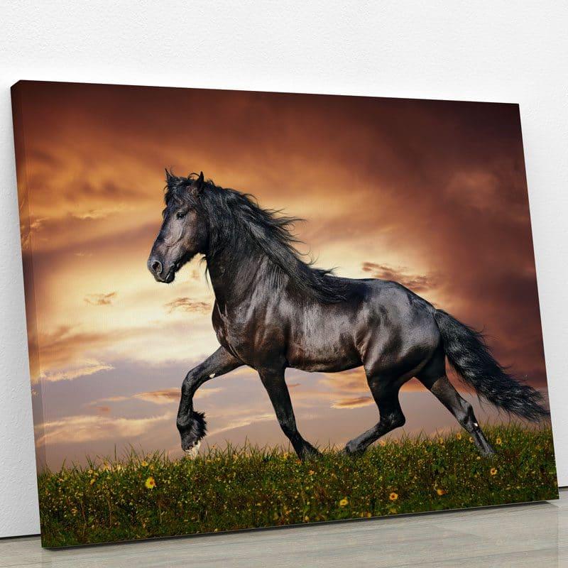 tableau-cheval-noir-chevaux-deco-animaux-tableau-murale-poster-decoration-artetdeco