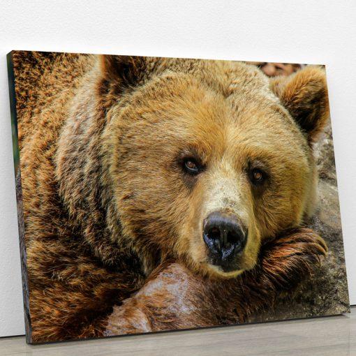 tableau ours deco
