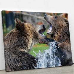 tableau grizzly grizzli ours brun decoration