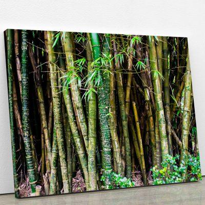 tableau-bamboo-bambou-deco-tropical-tableau-et-poster-artetdeco