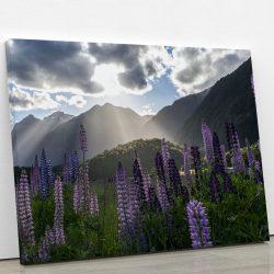 tableau-champs-lupin-fleur-et-montagne