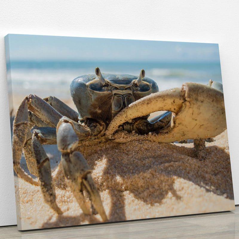 tableau-crabe-decoration-murale-poster-animaux-artetdeco
