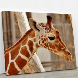 tableau-girafe-animaux-animal-decoration-murale-artetdeco.fr