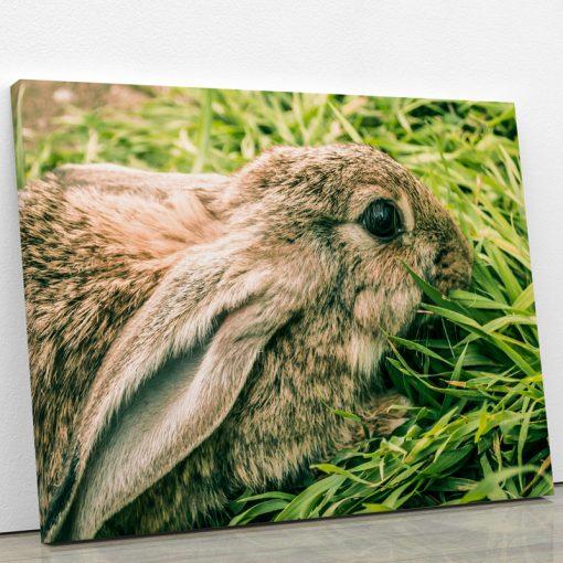 tableau-lapin-animaux-decoration-murale-artetdeco