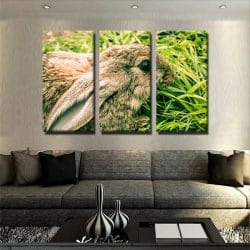 tableau-lapin-animaux-decoration-murale-tableau-3-parties-artetdeco