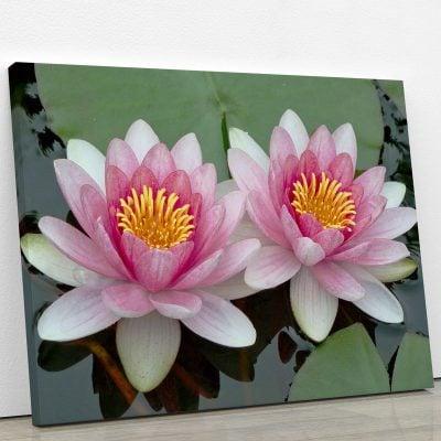 tableau-lotus-rose-et-nenuphare-tableau-florale-decoration-murale-artetdeco