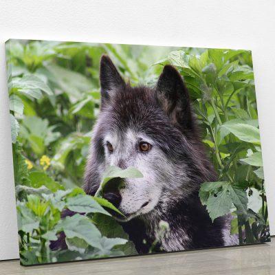 tableau-loup-gris-animaux-decoration-murale-artetdeco