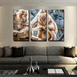 tableau-petit-singe-animaux-toile-3-parties-deco-murale-artetdeco-