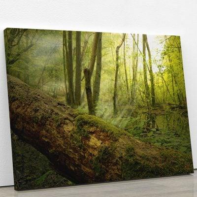 tableau-foret-bois-soleil-nature-deco-murale-artetdeco