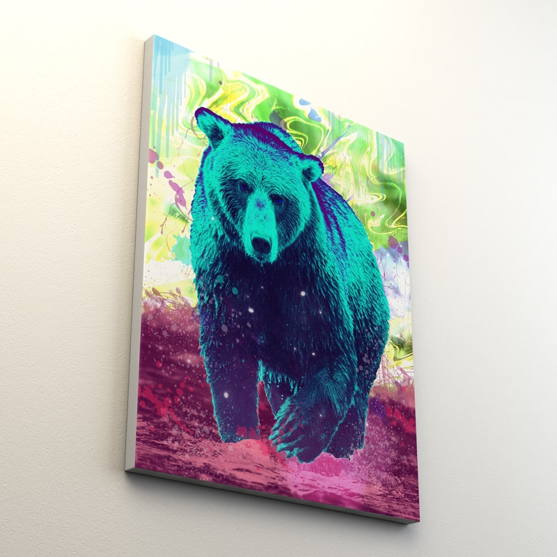 tableau ours coloré